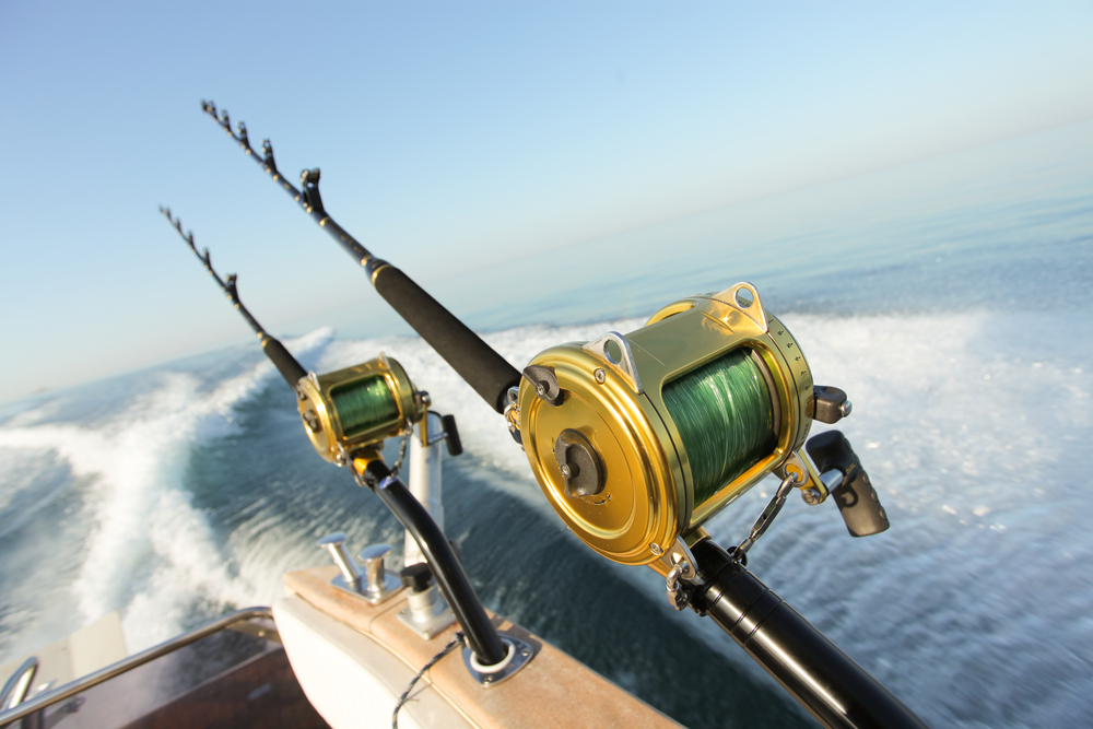 Madeira Beach Fishing Charters
